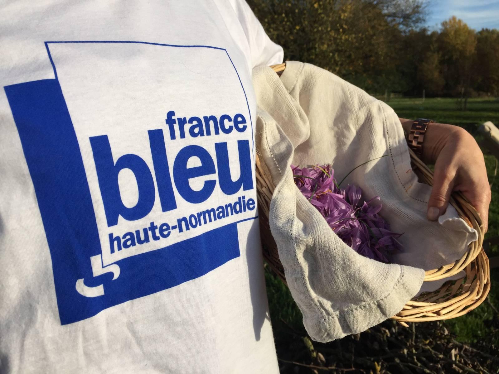 FRANCE BLEUE HAUTE NORMANDIE A LA SAFRANIÈRE DE GAUVILLE